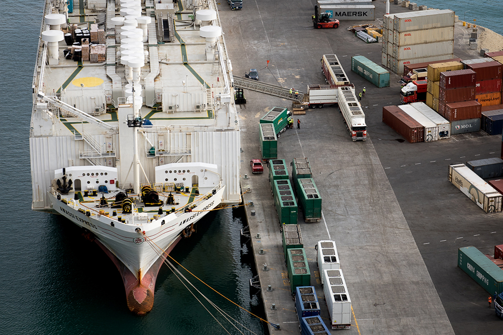 Loading of live export ship